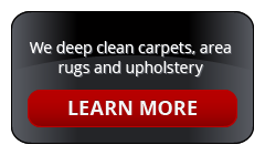 Steam Cleaned Carpets